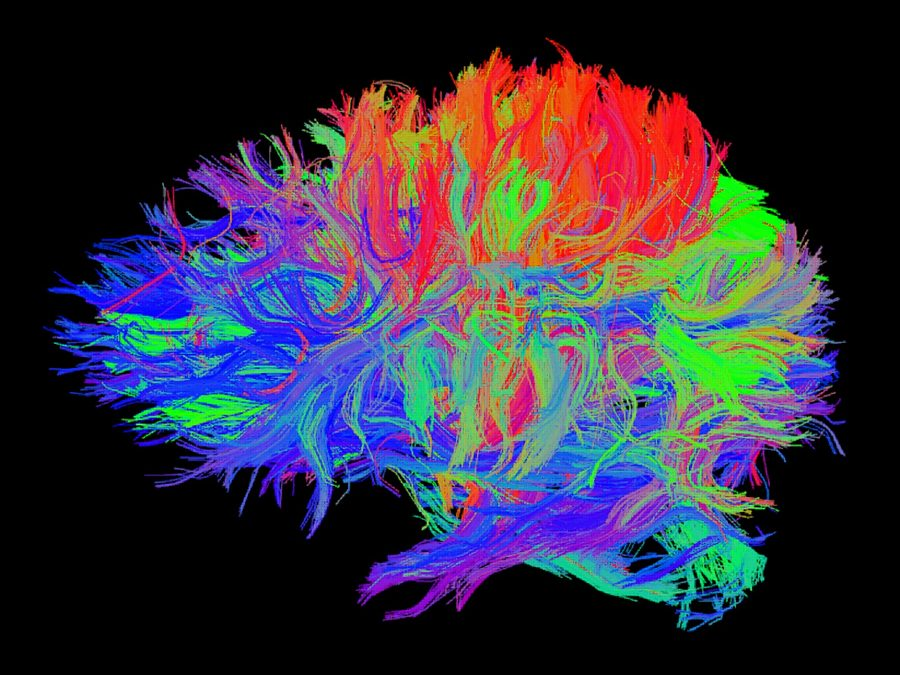 Secuelas cognitivas del Daño Cerebral Adquirido